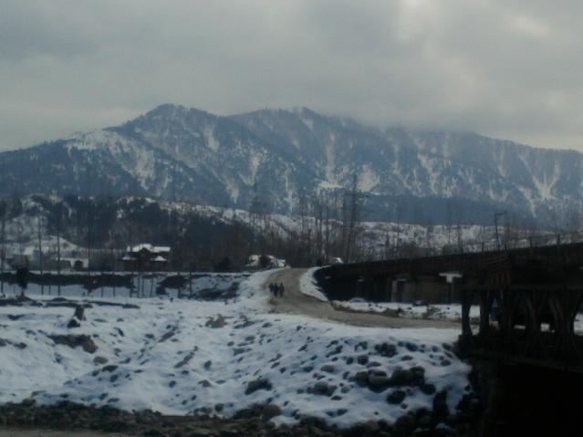 Photo-0221